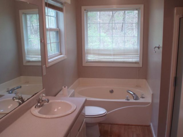 master bath with tub and stand up shower