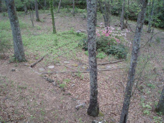 garden stone walkway to creek